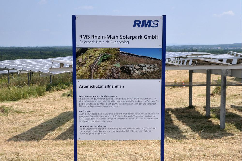 RMS Schild